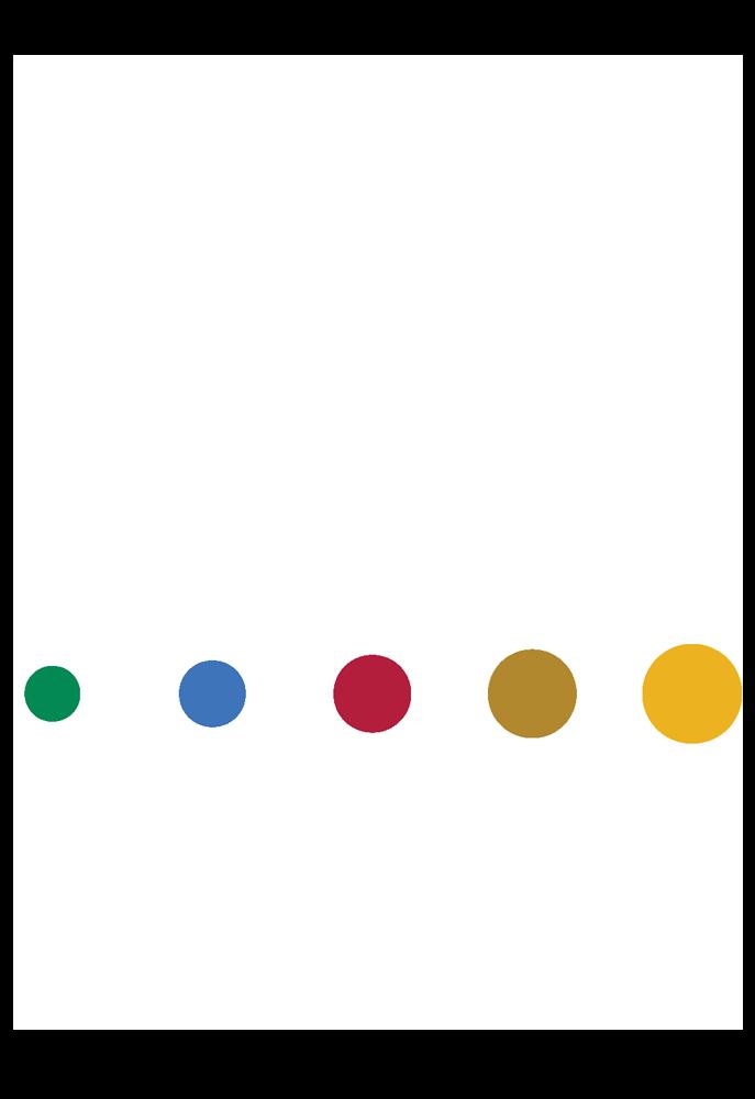 National Black MBA Association Austin Chapter